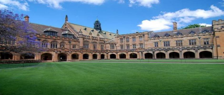 新南威尔士大学全景图片