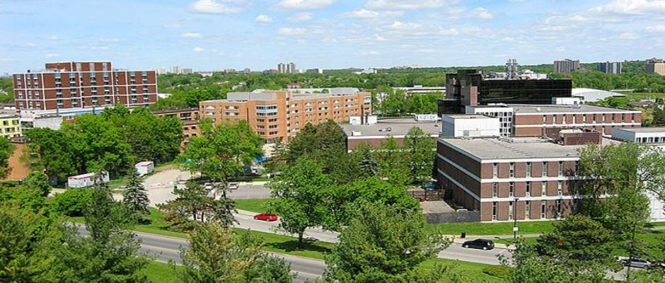 卡尔顿大学全景图片