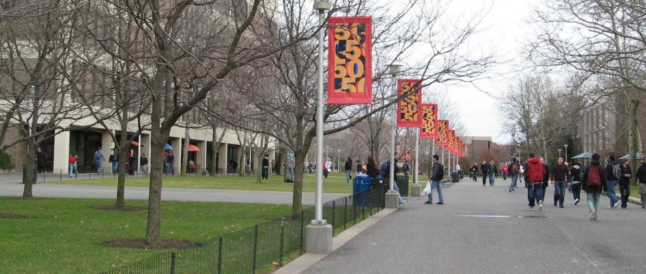 纽约州立大学石溪分校全景图片
