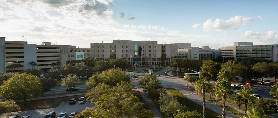 南佛罗里达大学全景图片
