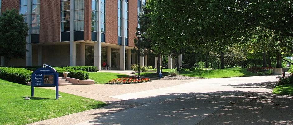 圣路易斯大学全景图片