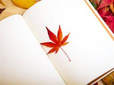 【词汇累积】详解托福词汇flower的由来 助你更好记忆单词