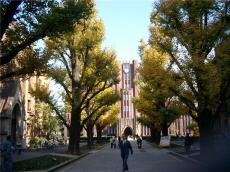 悉尼最大大学 西悉尼大学就业优势和申请条件