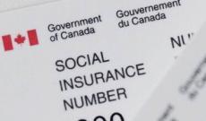 加拿大留学打工兼职须知 必不可少的社会保险卡如何申请?
