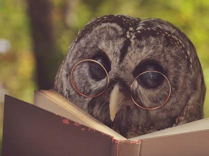 雅思课外读物--摩肯族孩子水下视力的奥秘