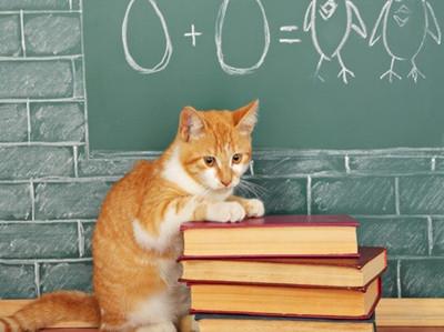 如何突破新SAT语法复合句难点?这4点原则要记牢
