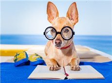 GMAT逻辑实用复习教材推荐 备考CR看这些书就足够了