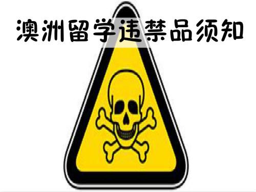 中国大妈携带违禁品闯关入澳遭处罚  留学生须知的入境违禁品