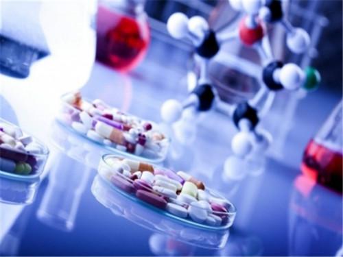 英国留学生申请经验分享 UCL药学专业解析