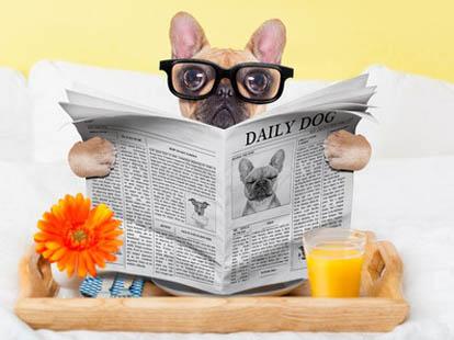 2018年雅思口语part1话题预测配答案:News(新闻) 变题不慌!