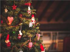 【每日晨读】经济学人GRE双语阅读 圣诞火爆商机从卖树开始
