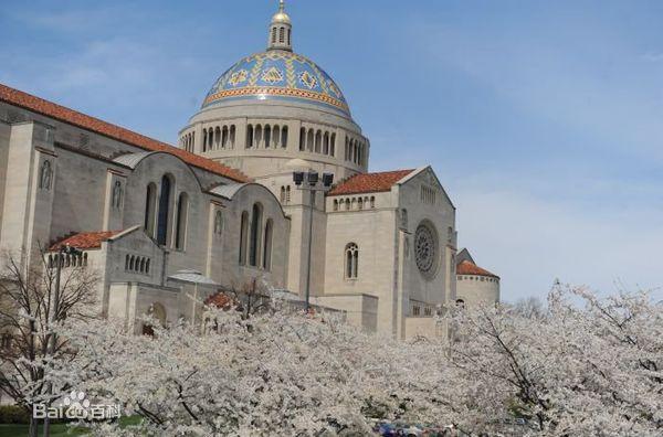 美利坚大学全景图片