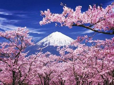 日本环球影城开馆时间订票方式票价种类交通资讯