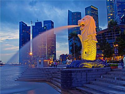 2018新加坡留学签证申请材料清单