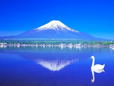 日本留学汇总贴-留学申请吃穿住行教科书级别攻略