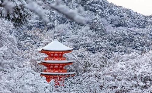 日本留学读研七大必备条件 你符合要求吗?