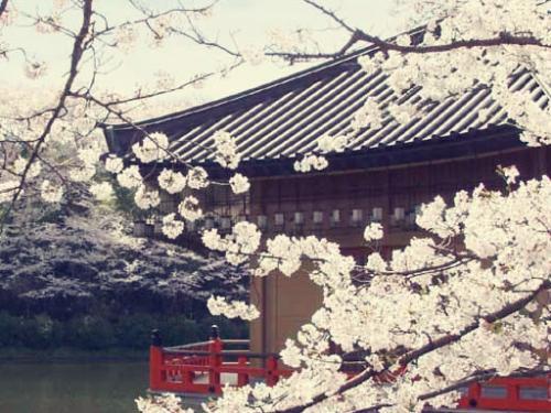 去日本留学 行前需要准备哪些物品