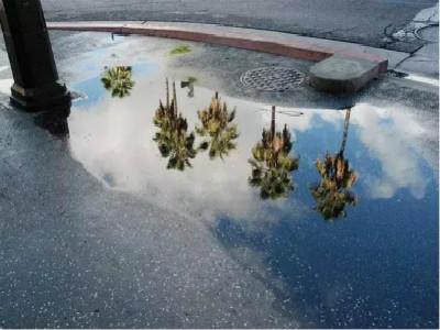 厉害了!洛杉矶下个雨都要交税!