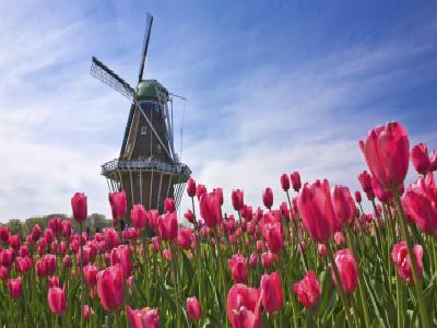 荷兰留学想要兼职打工 先了解这些