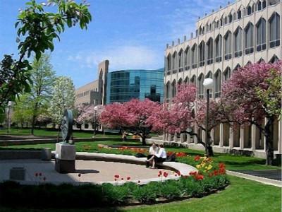 新西兰这所大学认可中国高考成绩 申请本科留学看过来