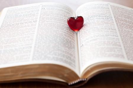 阅读冲刺丨雅思阅读判断题解析