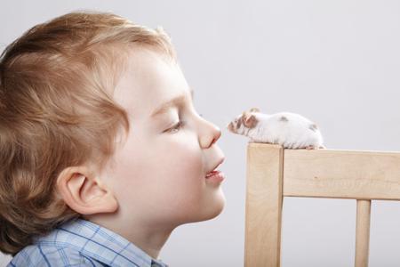 【听力高分记】雅思听力选择题的最佳做题原则详解